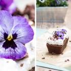 Veganer Schokoladenkuchen mit Veilchen