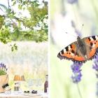Ein feiner Sweet Table mit Lavendel und Miss Etoile