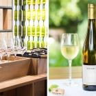 Wein aus Südtirol – das Meraner Weinhaus
