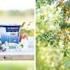 Landpartie! Herbstliches Joghurtbrot und reife Obstbäume mit Giveaway!