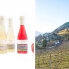 Winterimpressionen aus Südtirol - Kohl Apfelsaft