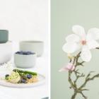 Spargel, Bärlauch, Magnolien – die Frühlingslieblinge