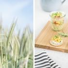 Sommer Snacks im Picknick Style