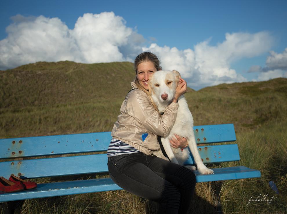 Hundestrand Sandstrand Nordsee Urlaub