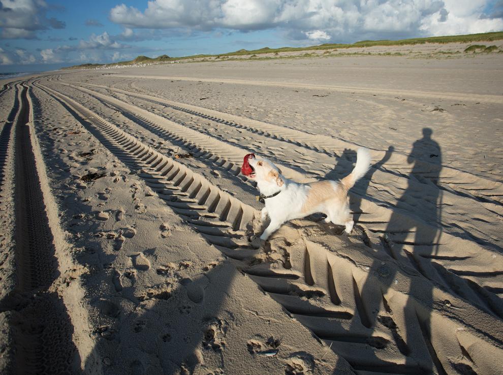 Sylt List Sandstrand Strandkorb