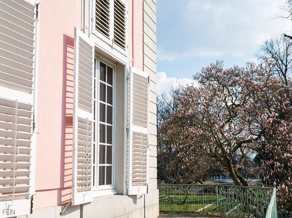 Düsseldorf Schloss Benrath Magnolien
