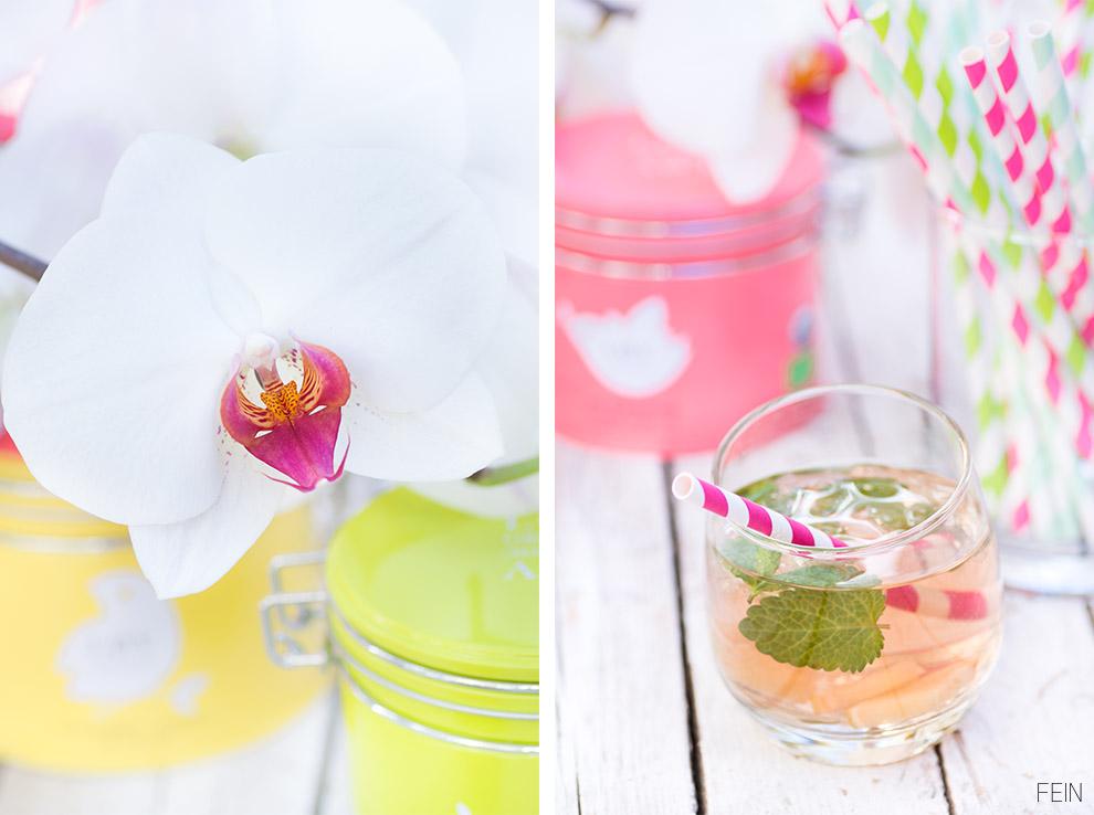 Eistee Orchidee Gelb Grün Pink