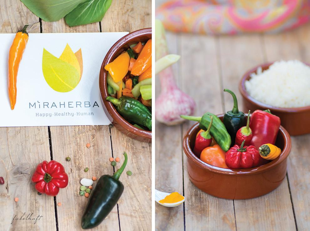 Miraherba Gewürze Logo Indisch Curry Curcuma Pippali