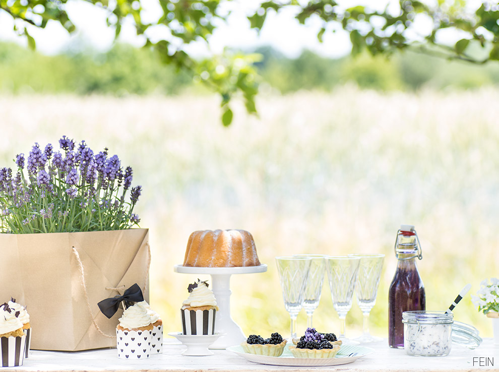 Lavendel Sweet Table Brombeere