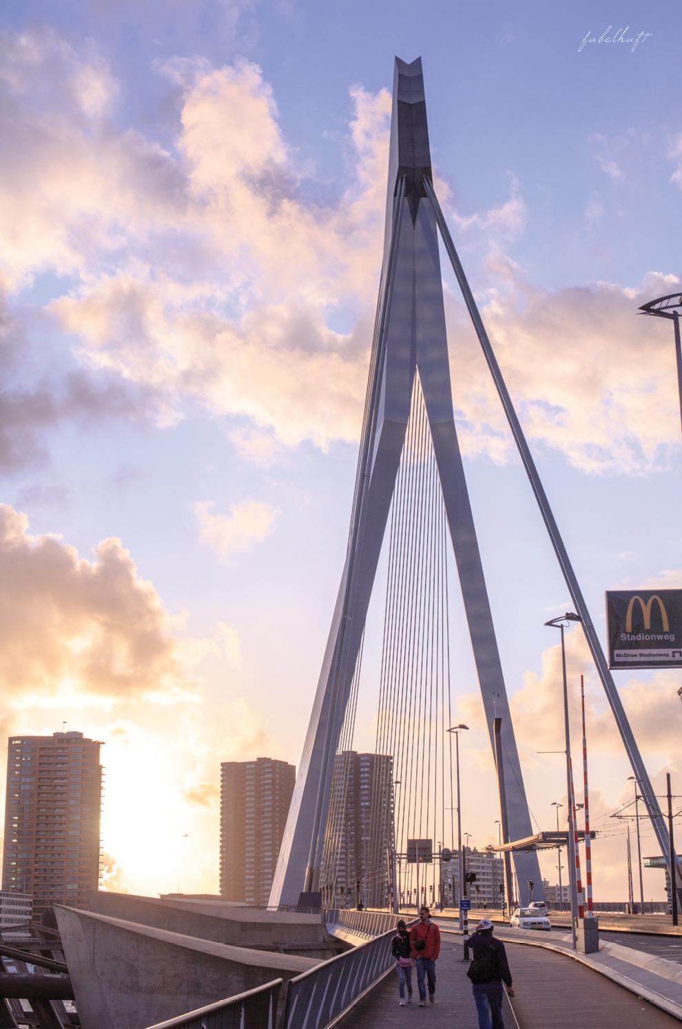 Erasmus Brücke Rotterdam Architektur Erasmusbrug Niederlande Abendhimmel Abendrot