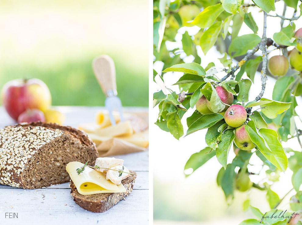 Joghurt Söbbeke Käsebrot Äpfel