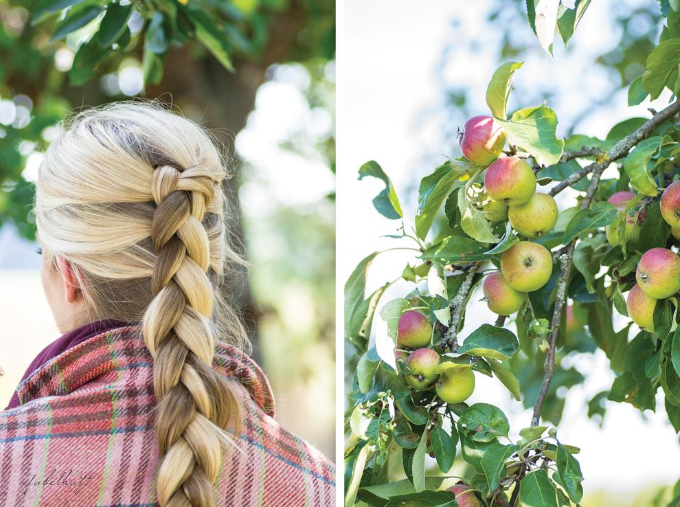 Bauernzopf Flechten Blazer Tweed Karo Schottenkaro Apfelbäume Herbst 2015