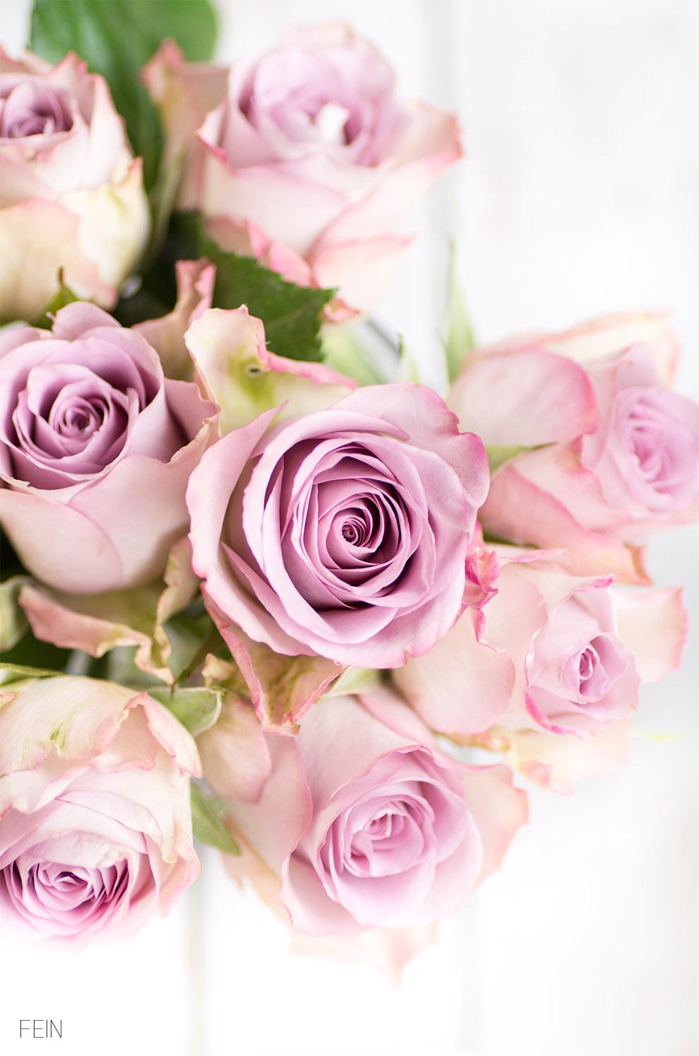 Milchreis lila