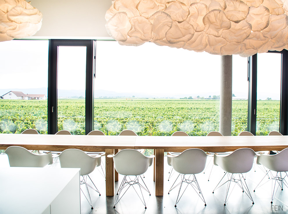 Wein Eames Chair