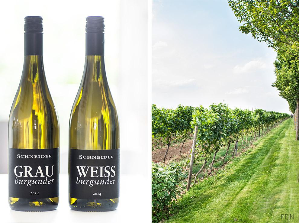 Wein Schneider Weißweine