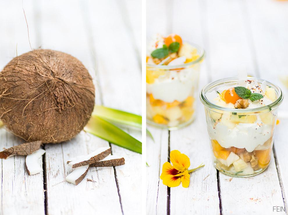 Winter Exotic Kokosnuss Dessert