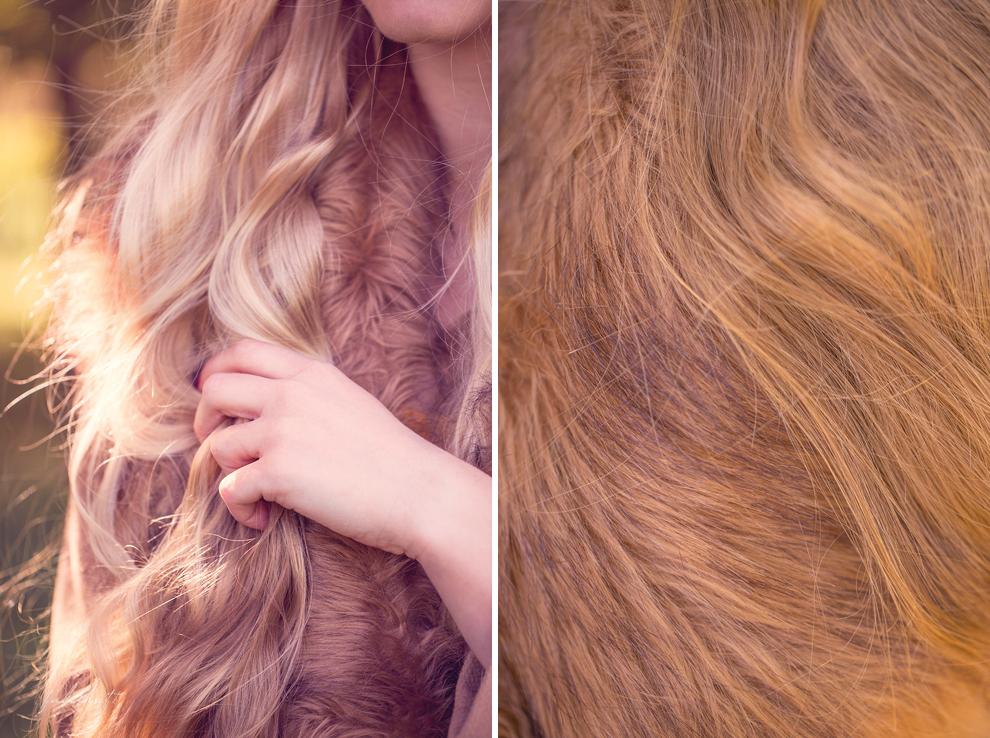 Herbst Gold Licht Haar Locken Wellen Fell Pelz Fuchs