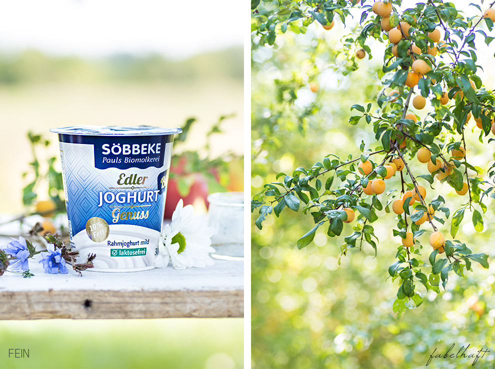 Joghurt Söbbeke