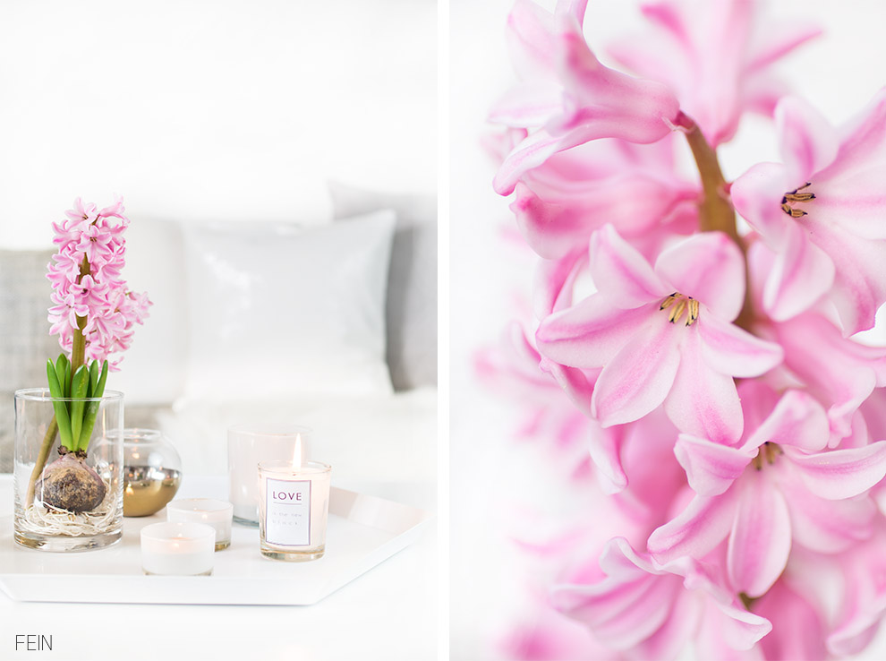 Method Pink Hyazinthe