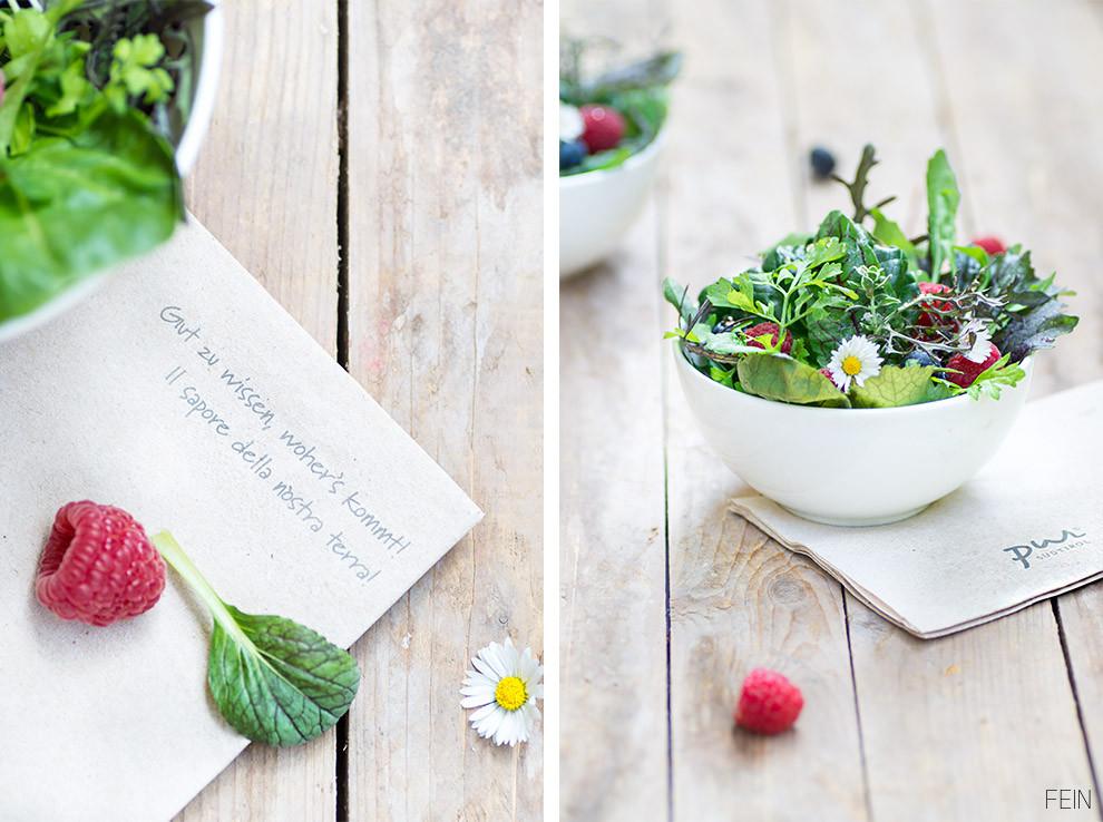 Salat Wildkräuter Pur
