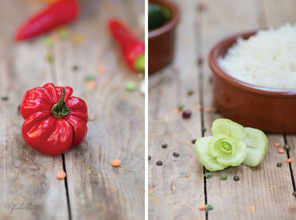 Curry indische Küche Gewürze Kapha