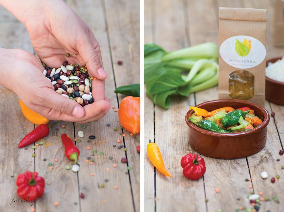 Indische Küche Ayurveda Dal Reis gelbes Curry Pak Choi
