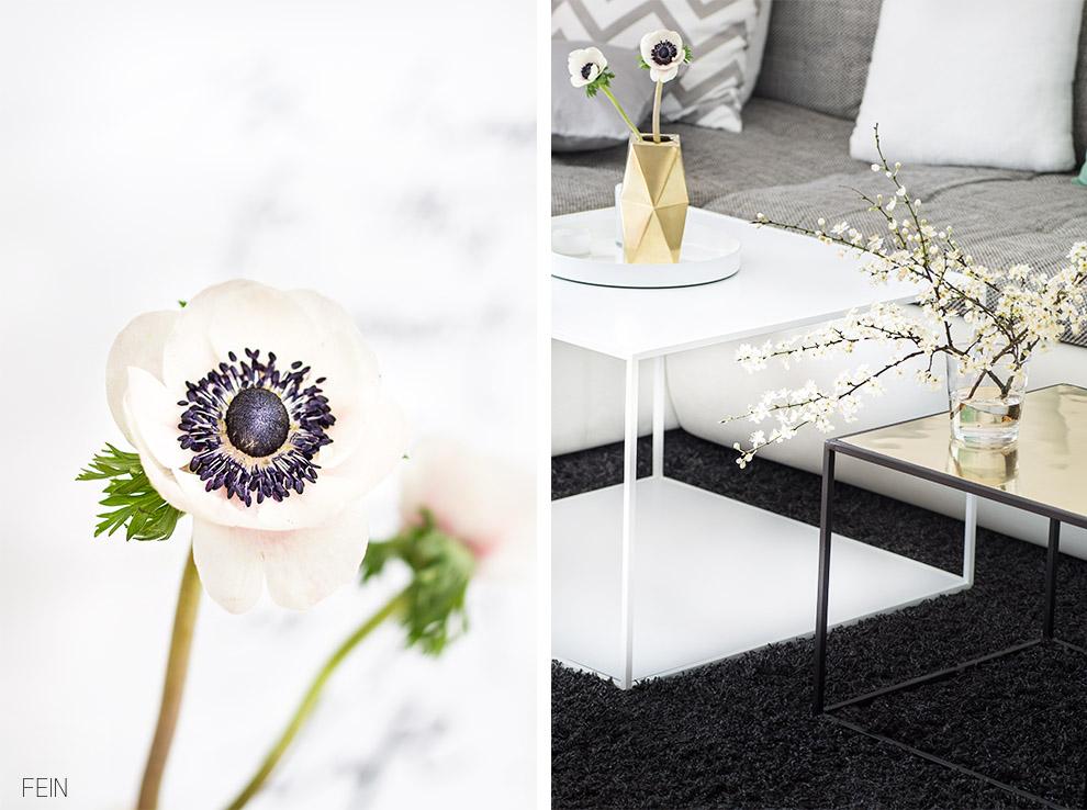 Marmor Anemone