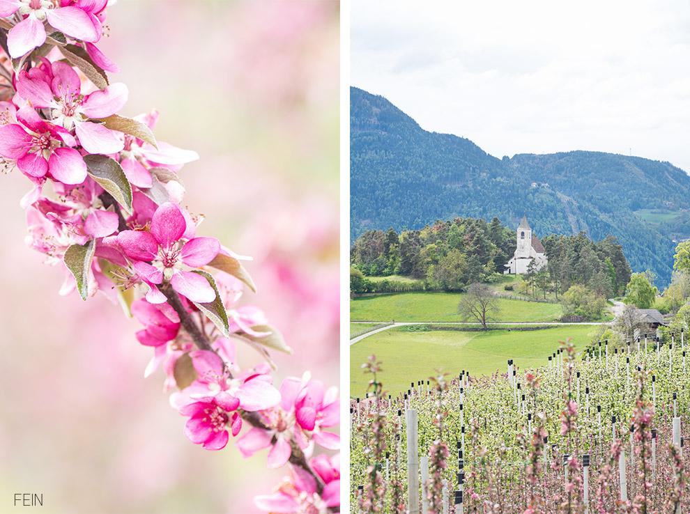 Sommerdrink Ritten Südtirol