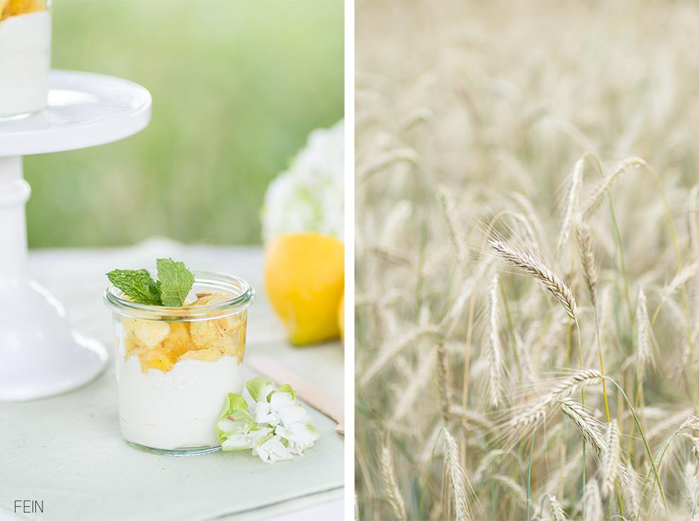 Joghurt Sommer Dessert Ideen