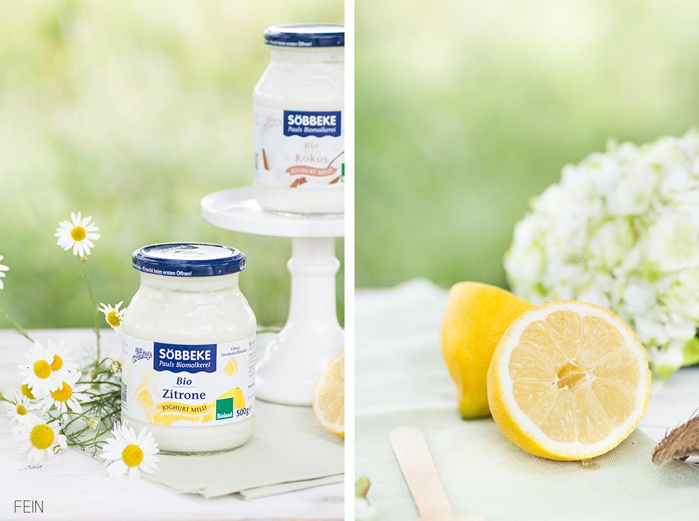 Joghurt Sommer Söbbeke Bio Zitrone Kokos