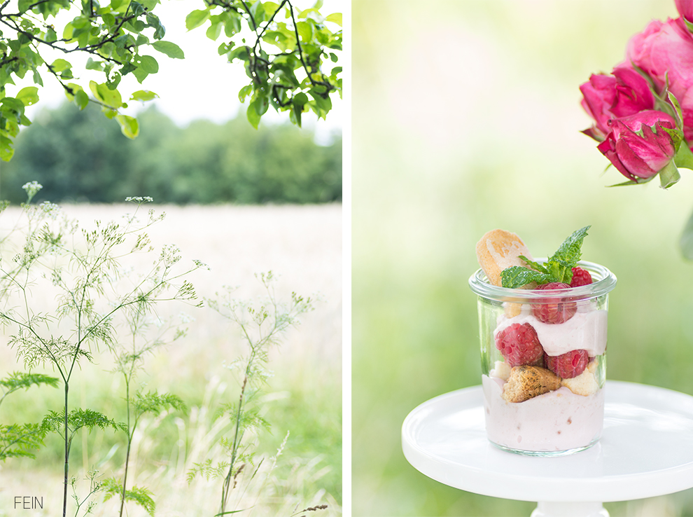 Joghurt Sommer Trifle Himbeere