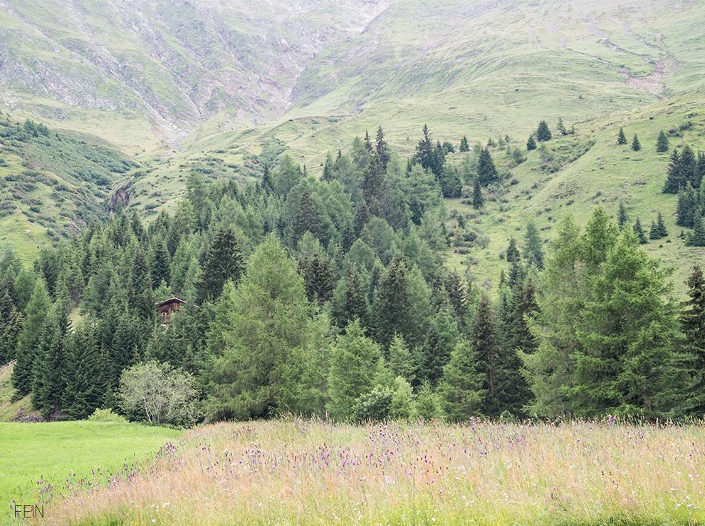 Zuhause Unterwegs Berge Natur