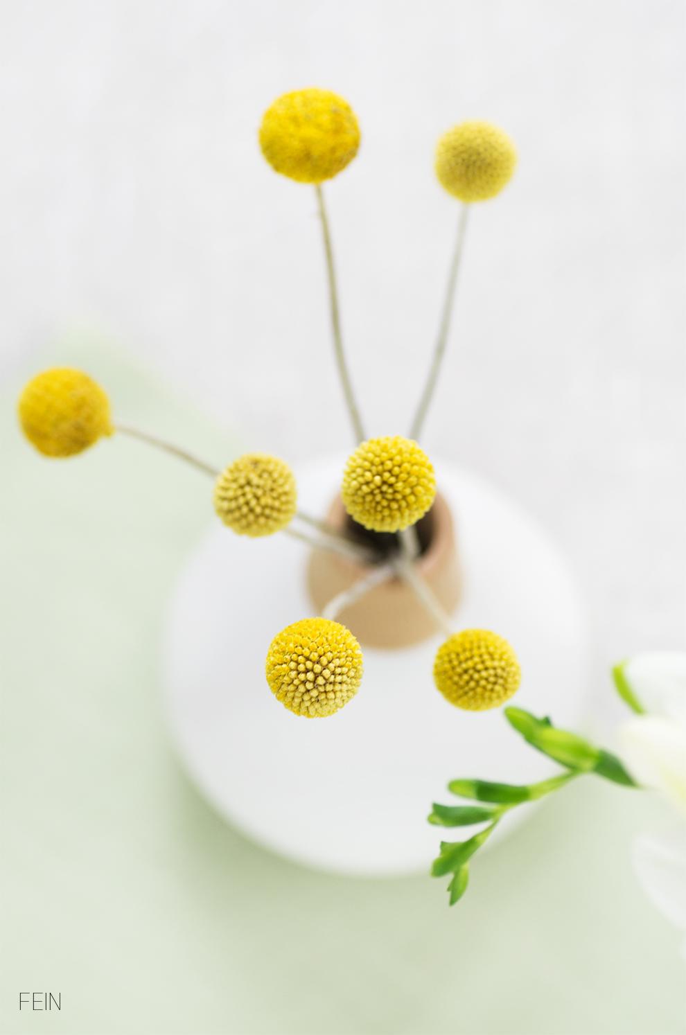 Blumen trommelstöckchen