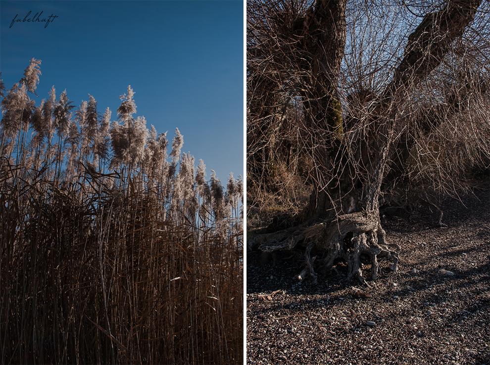 Blogger Fein uns fabelhaft jahresrückblick chiemsee silvester winter urlaub reisebericht kusmi tee kulinarisch fashion beauty 87