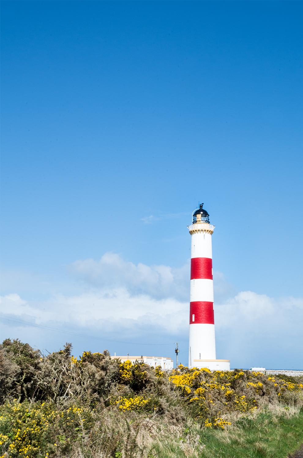 Schottland Küste Leuchturm