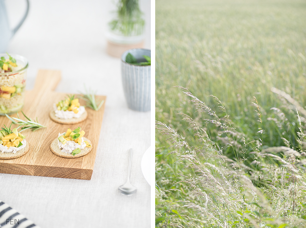 Snacks Sommerwiese Picknick im Grünen Natur
