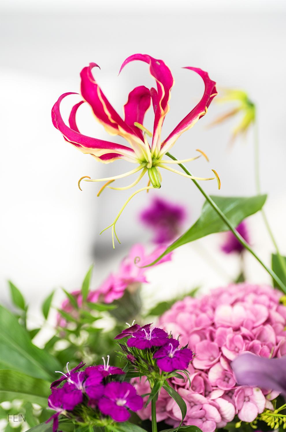 Indian Summer Farben Blüten
