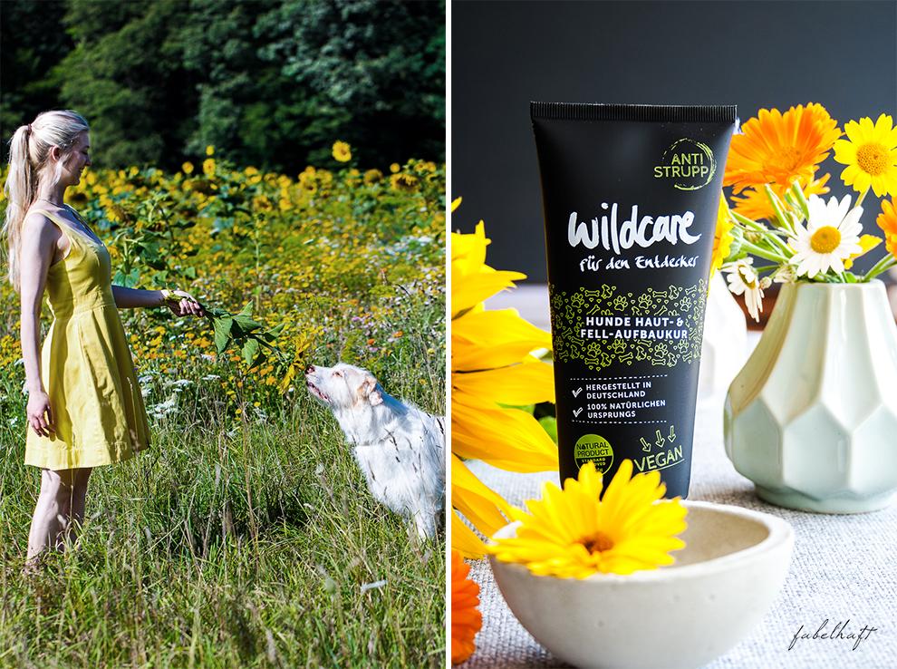 Wildcare Hundeshampoo Hund Pflege Haarkur struppig Weiches Fell Naturkosmetik Sonnenblumen Hundeliebe 4