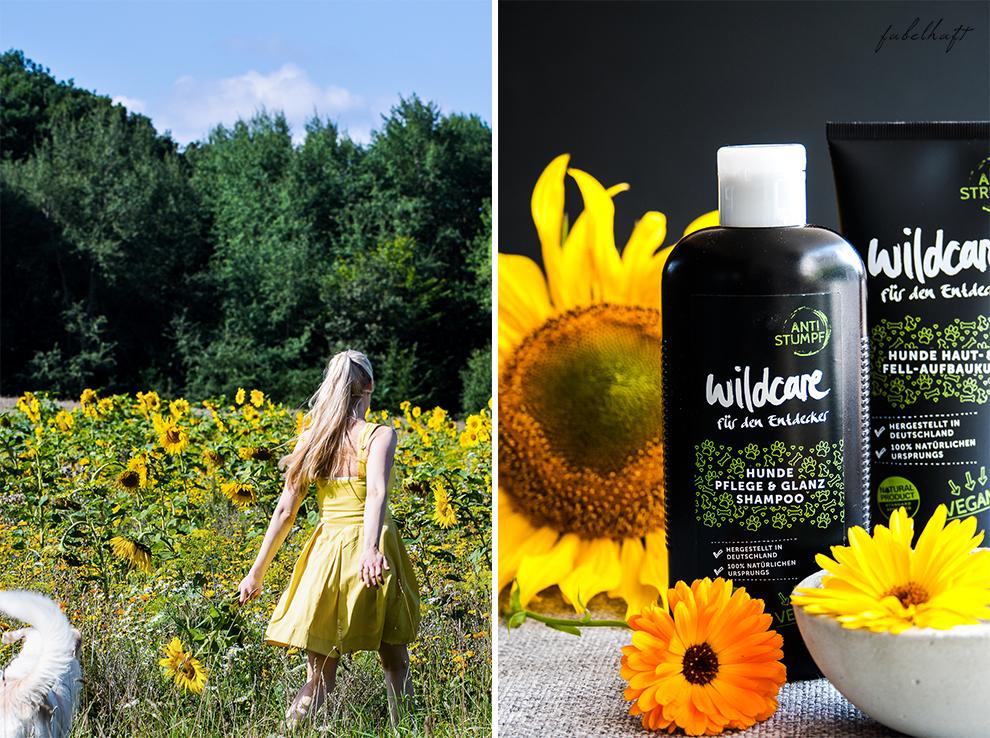 Wildcare Hundeshampoo Hund Pflege Haarkur struppig Weiches Fell Naturkosmetik Sonnenblumen Hundeliebe