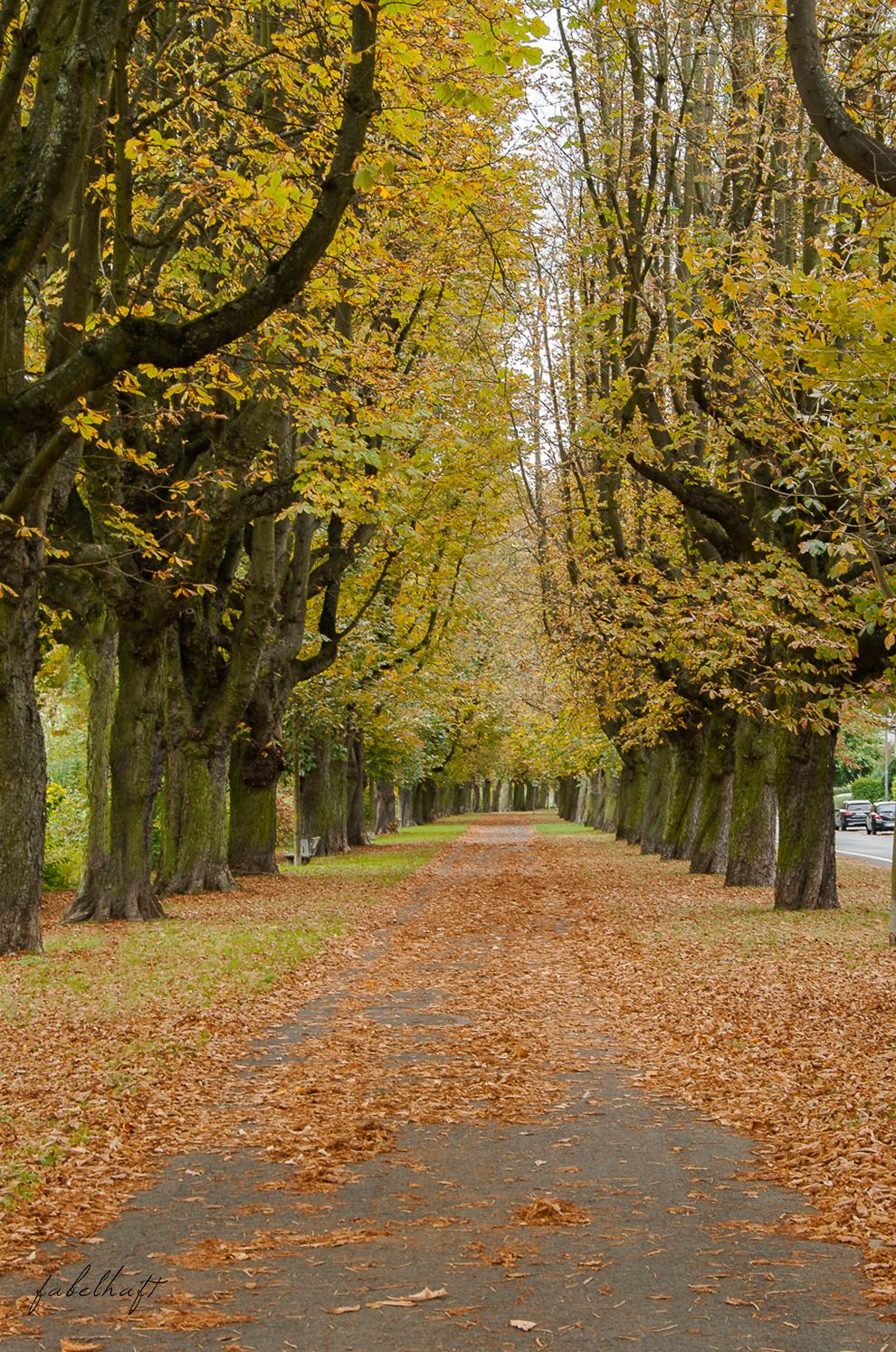 Meinekette Herbst Golden Roségold gemütlich Herbstlaub Talbot Runhof Blond Strick Beige Rollkragen Outfit Trend Mode 5