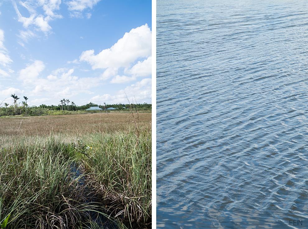 Florida Everglades Nationalpark