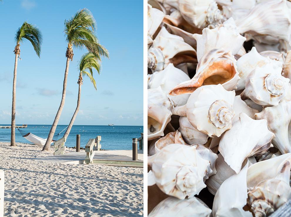 Florida Travel Holiday Urlaub