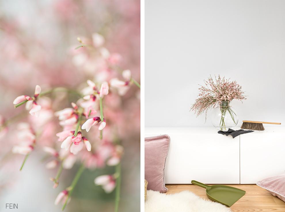 Scandi Stil Frühblüher