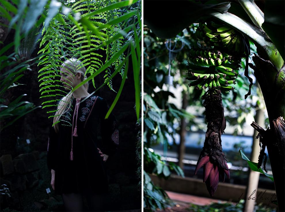 Jungle Trend Samt Bestickt Kleid Grün Tropisch Regenwald botanischer Garten 2
