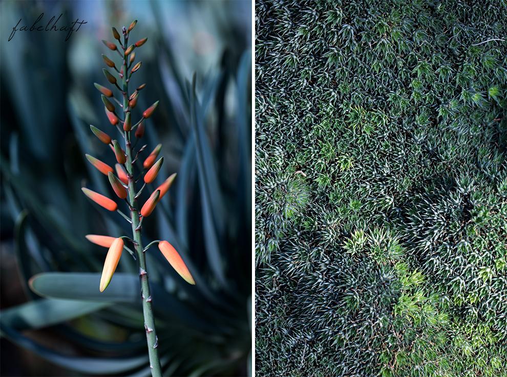 Jungle Trend Samt Bestickt Kleid Grün Tropisch Regenwald botanischer Garten 11