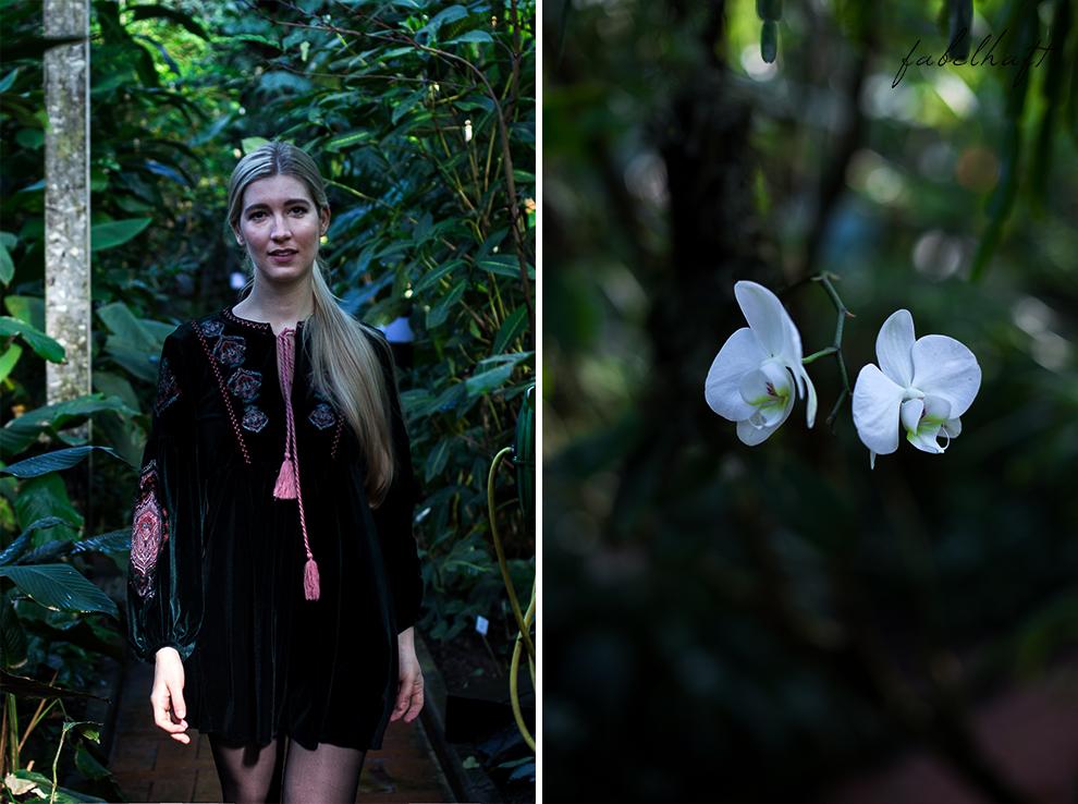 Jungle Trend Samt Bestickt Kleid Grün Tropisch Regenwald botanischer Garten 9