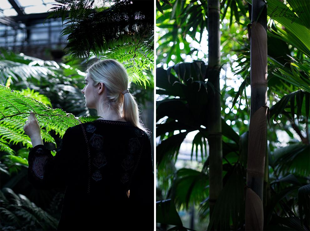 Jungle Trend Samt Bestickt Kleid Grün Tropisch Regenwald botanischer Garten