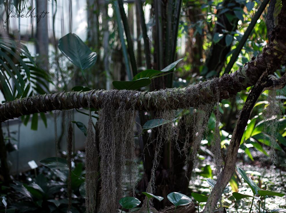 Jungle Trend Samt Bestickt Kleid Grün Tropisch Regenwald botanischer Garten 10