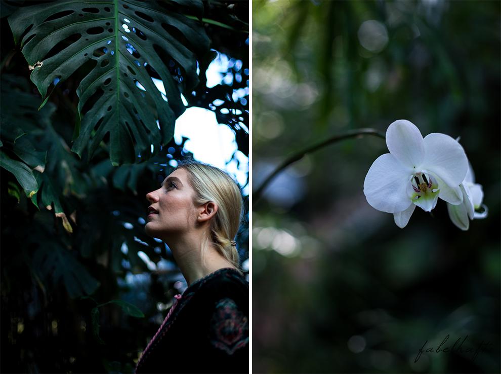 Jungle Trend Samt Bestickt Kleid Grün Tropisch Regenwald botanischer Garten 3