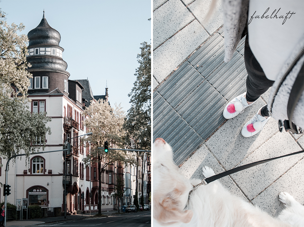 Marburg Hometown Heimat Stadt City Guide Blogger Fein Fabelhaft Fashion